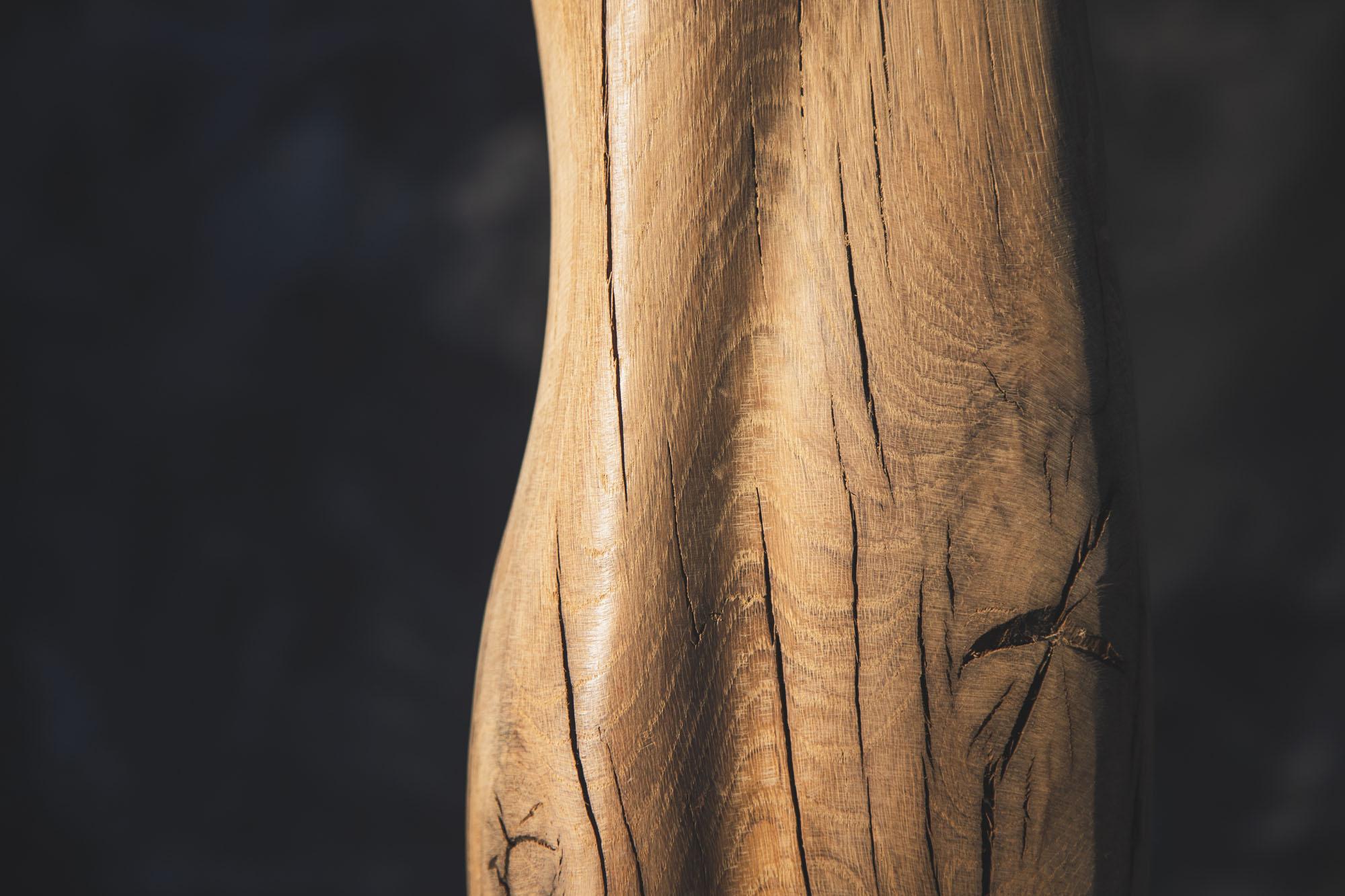 eliane d'orfond bois