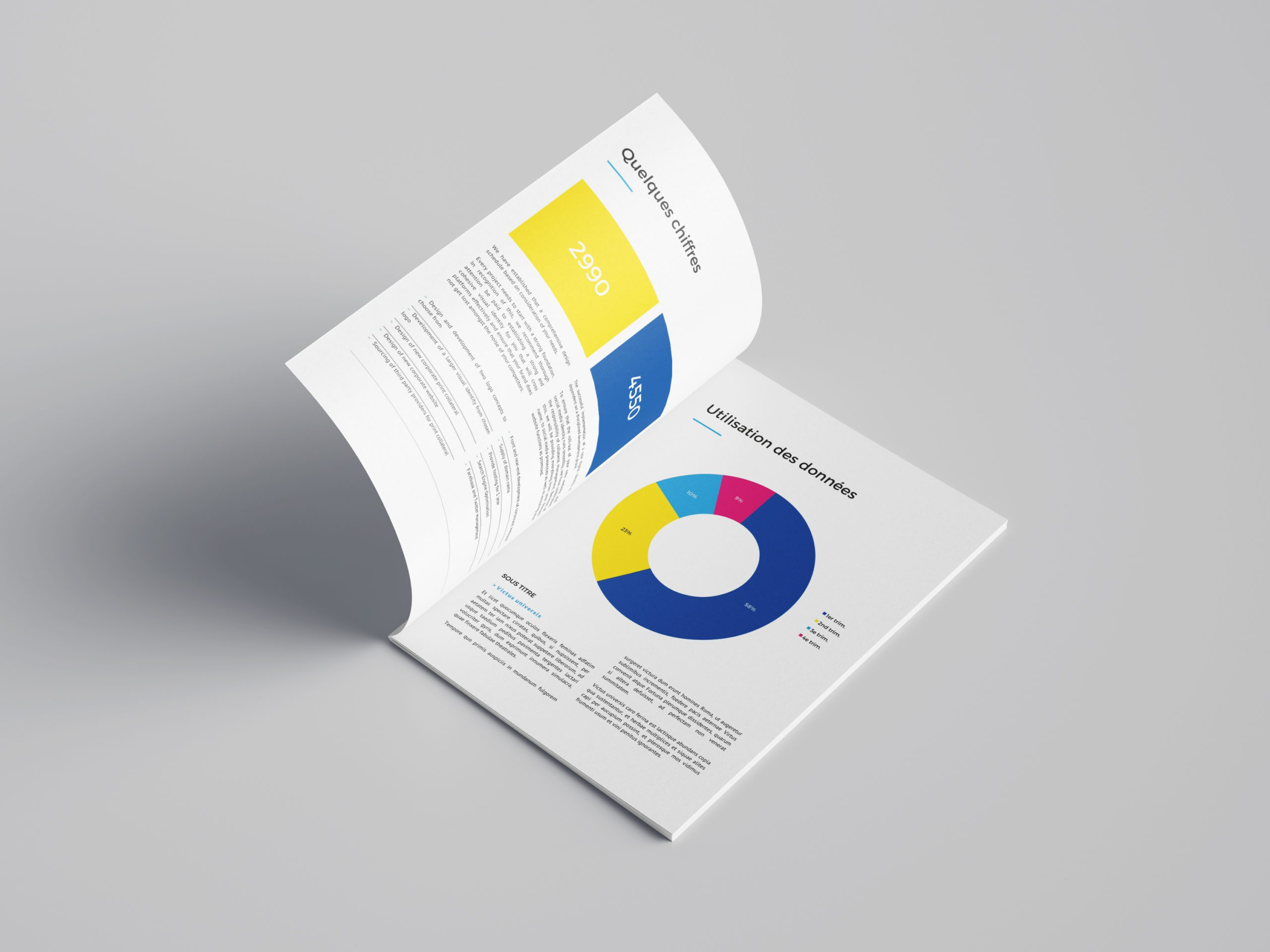 rapport annuel INDS